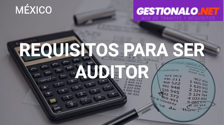 Requisitos para Ser Auditor