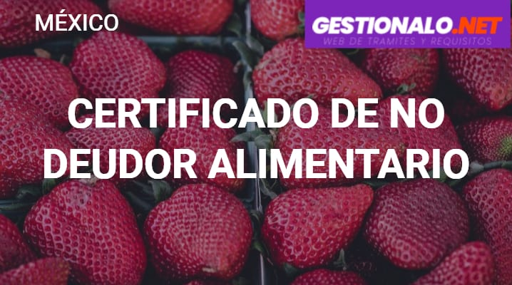 Certificado-de-no-deudor-alimentario