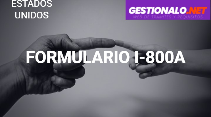 Formulario I-800A