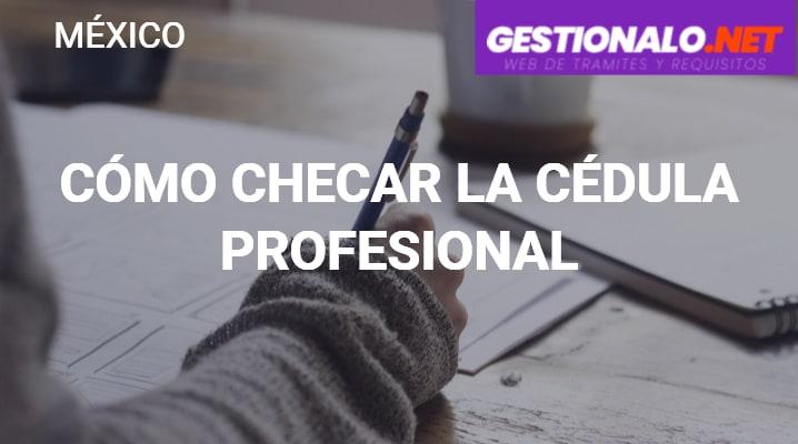 Cómo Checar la Cédula Profesional